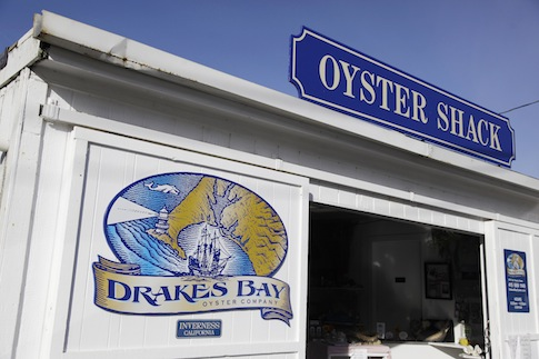 Drakes Bay Oyster Co. / AP