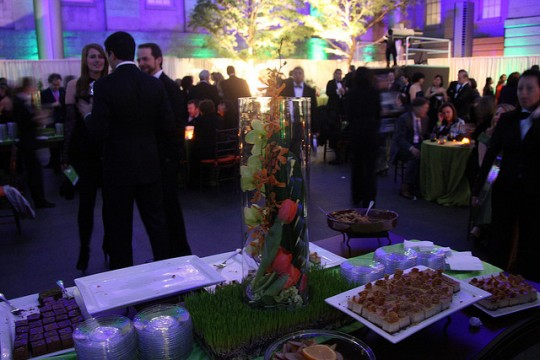 2009 Green Inaugural Ball (Flickr user Live_Earth)