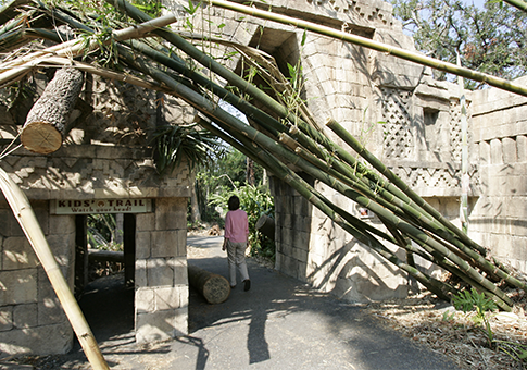 Audubon zoo after Hurricane Katrina hit in 2005 / AP