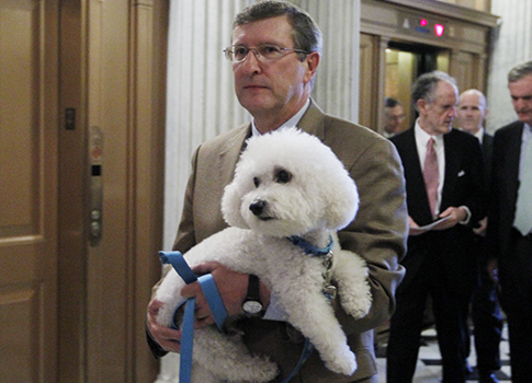 Former Sen. Kent Conrad and Dakota / AP