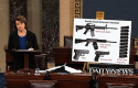 Sen. Dianne Feinstein speaks about gun legislation on Senate floor, April 17 / AP