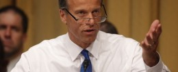 John Thune / AP