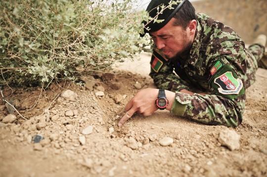 Afghan soldier trains to defuse IED (AP)