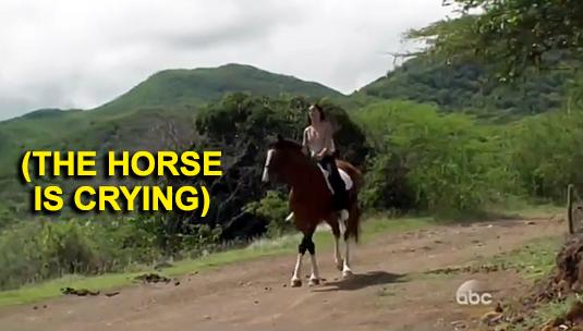2-horse1