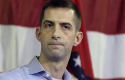 Rep. Tom Cotton / AP
