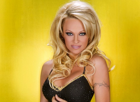 Pamela Anderson Back in a Bathing SuitEarly Pamela Anderson
