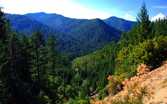 Siskiyou Mountains
