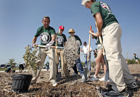AmeriCorps volunteers plant trees with Miami Mayor Manny Diaz / AP