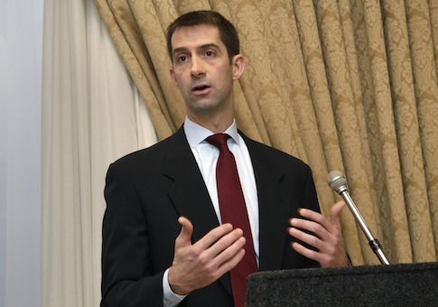 Rep. Tom Cotton, (R., Ark.) / AP