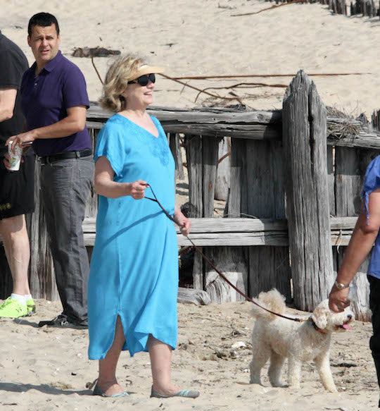 Hillary Clinton walks on the beach with the help of a service dog. (Matt Agudo/INFphoto.com)