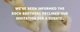 NextGen Climate ad 'Chickens' targeting Koch brothers