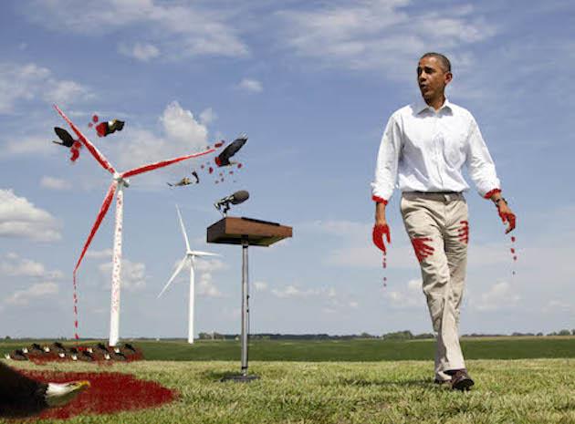 Environmental justice? Or senseless murder?