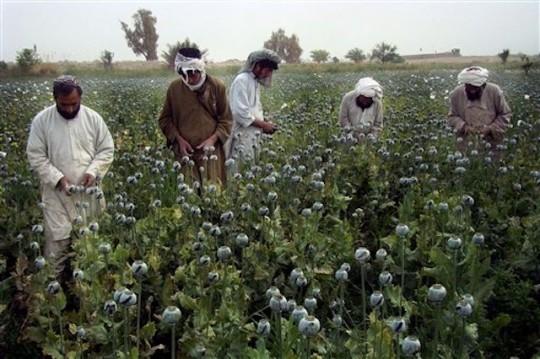 APTOPIX Afghanistan Opium
