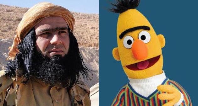 Bert terrorist