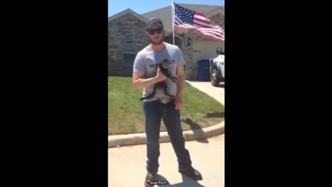 Patriotism and Kittens / Facebook
