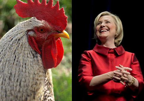 Hillary and chicken