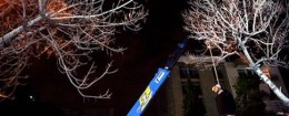 'Iran crane execution' from the web at 'http://freebeacon.com/wp-content/uploads/2015/11/Iran-crane-execution-260x105.jpg'