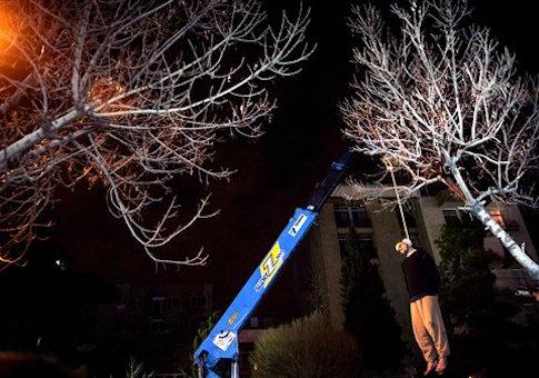 Iran crane execution