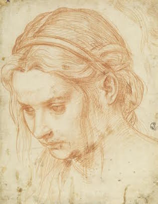 Study of the Head of a Young Woman