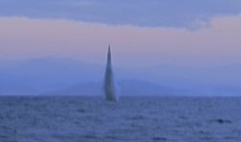 The missile test / Screen Capture