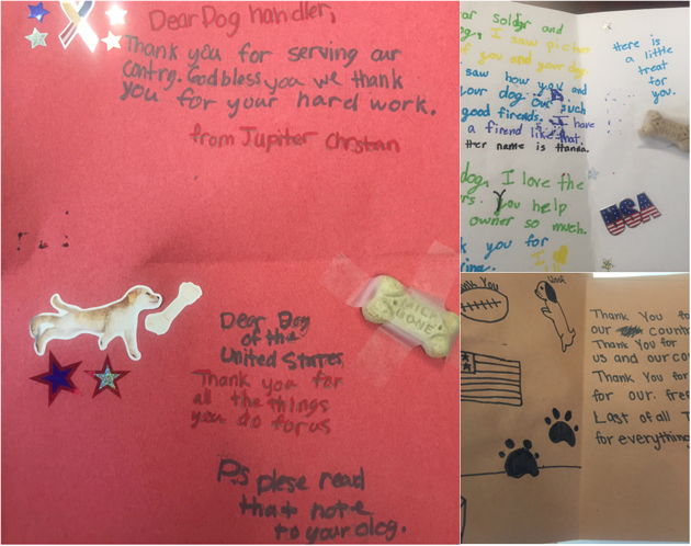 Pictures of the Cards for Dog Care Package Story