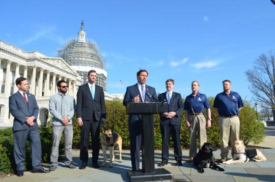 Cole Lyle speaks at PAWS Act unveiling / Elizabeth Dillon
