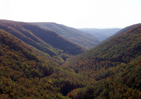 Blackwater canyon in Thomas, W.V. / Flickr user Jon Dawson