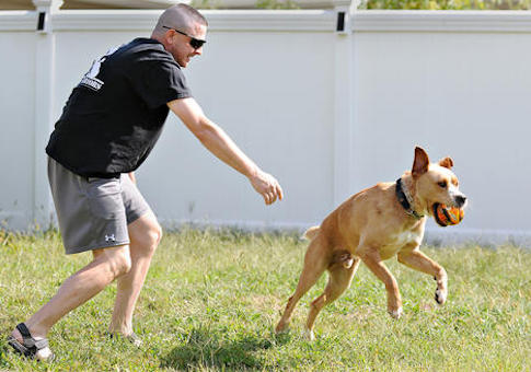 Todd Oslen, who suffers with PTSD, plays with his service dog Hager / AP