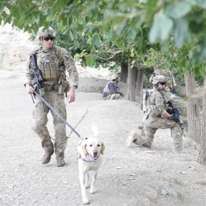 Jake and Abby in Afghanistan / Facebook