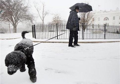 Sunny Obama / AP