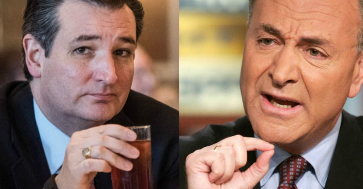 After Schumer Bashes Ted Cruz;s Healthcare Plan as a ;Hoax,; the Texas Senator Has a Brutal Comeback