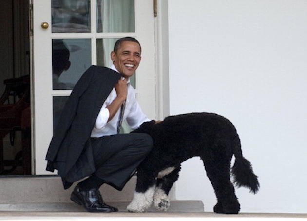 US President Barack Obama pets the famil