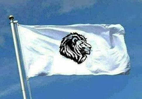 whiteflag
