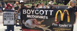 Boycott McDonald's
