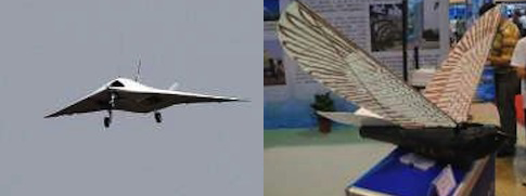 China's new UCAV, a small bird-like drone shown during a recent military show at Zhuhai / Source: Chinese Internet