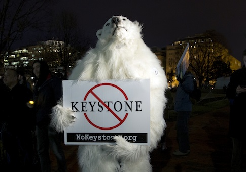 An activist dressed as a polar bear participates in a protest vigil in Lafayette Park across from the White House