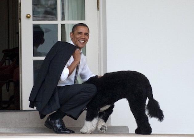 US President Barack Obama pets the famil