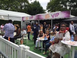 ozyfest vip section