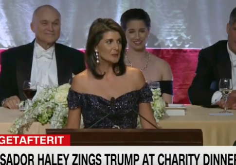 Nikki Haley Mocks Warren at Charity Dinner: 'You Wanted an Indian Woman, but Elizabeth Warren Failed Her DNA Test'