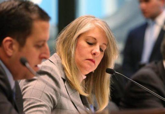 illinois dem state rep calls for death of republican colleague