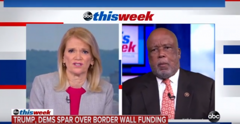 photo image Democratic Homeland Security Chair: I Would Not Rule Out a Wall in Certain Instances