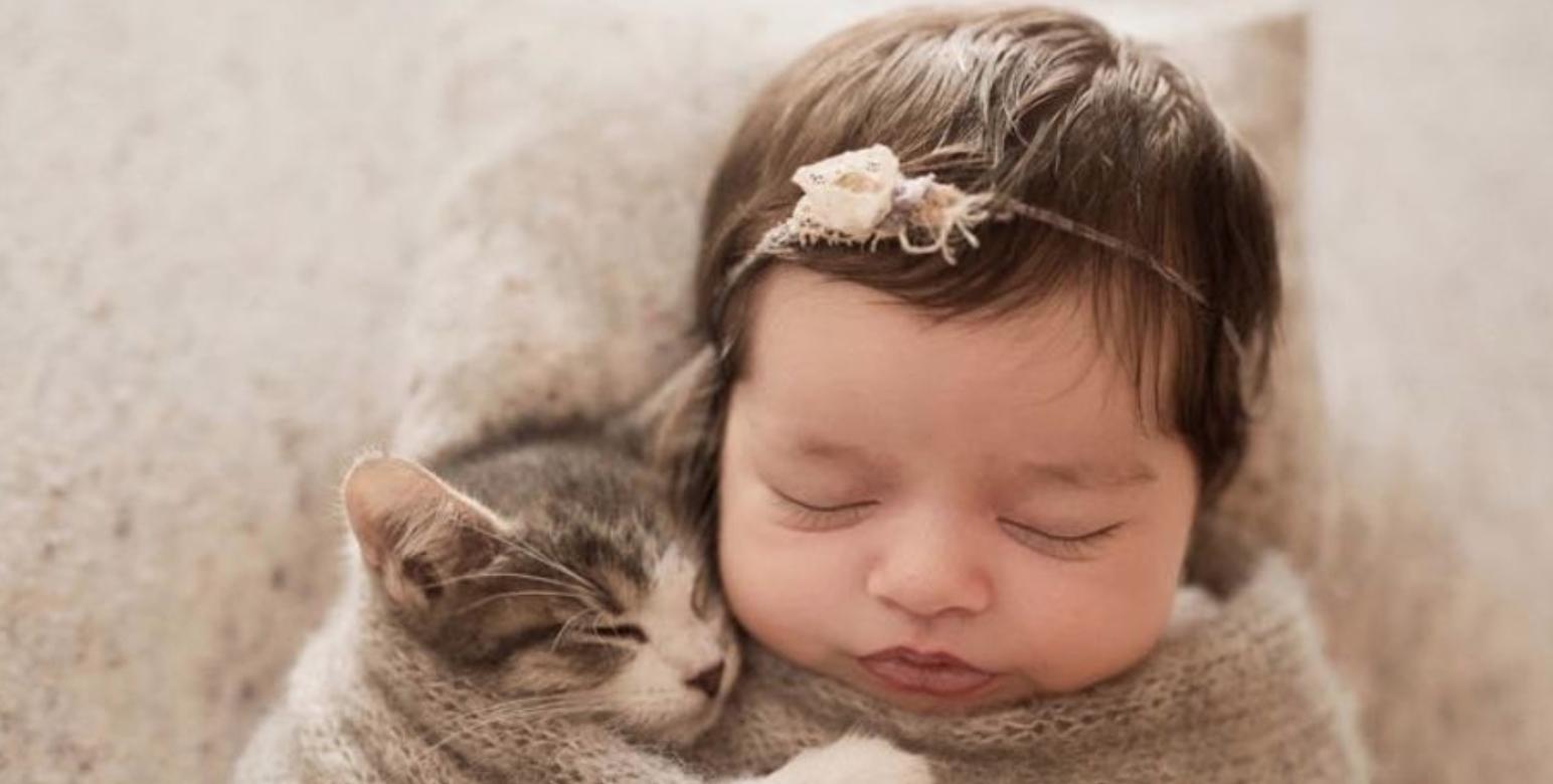 картинки кот и малышка твоем